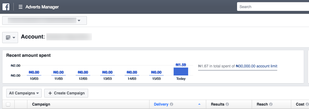 Facebook Ad Manager In Naira